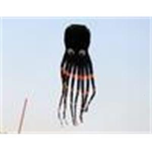 8m singola linea Stunt Parafoil biack Octopus POWER Sport Kite esterno giocattoli +