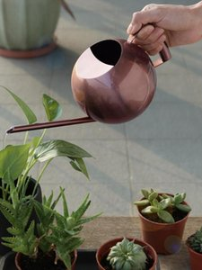 1000Ml Stainless Steel Watering Can Fleshy Water Kettle Gold Long Mouth Watering Pot Garden Supplies