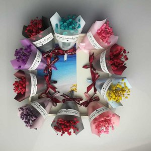 Party Favor Mini Pack Dried Flower Sky Star Flower Star Natural Dry Flants Wedding Home Decoration Photo Props DIY Jewelry Making Craft Gift