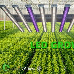 Z2 LED растут света Samsung LM301H рост палатка в помещении Заводная палатка крытый светильник приводит рост гидропольных саженцев и цветов DHL
