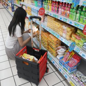 Portable Home Shopping Folding Old Man Shopping Supermarket Trolley