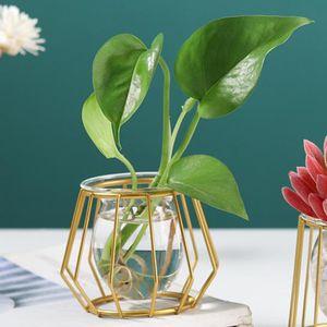 Vaso de flor geométrico 3D, titular da planta de ar do terrarium da planta de vidro Potenciômetro de flor