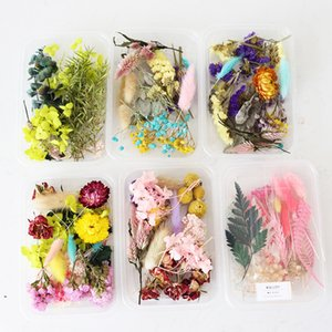 10 Boxes,Multi-purpose dried flower materials,Eternell rose daisy DIY Wedding invitations gift Card Scented candle Decoration Y1128