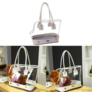 Hot Cute Transparent Small Pet Cat Dog Travel Luxury Carrier Bag Chihuahua Dog Puppy Outdoor Carrying Bags Tote Handbag White