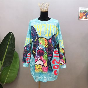 Cartoon Rose Bear Dog Harajuku Sweatshirt Dress Women Oversized Warm Winter Tops Kawaii Girls 2020 New Plus Size Loose Casual F1204