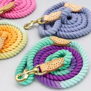 4 Colors Durable Nylon Dog Leash Pet Puppy Walking Training Dog Leash Lead Dogs Leashes Strap Belt Cotton Traction Rope sqcxyw
