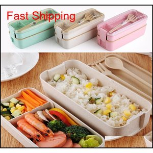 750ml Healthy Material Wheat Straw Bento Boxes 2 Layer Lunch Box Microwave Dinnerware Food Storage Container qylYXc bde_luck