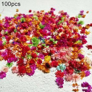 100Pcs Dried Flower Head Chrysanthemum DIY Handmade Craft Nail Art Filling Matierial Accessories Preserved Flower Decor