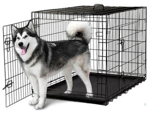 48'' 2 Doors Wire Folding Pet Crate Dog Cat Cage Suitcase Kennel Playpen With Tray