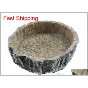 Rettile Water Hood Food Bowl Resin Rock Worm Feeder per Leopard Gecko Lizard SPI Qylzhj DH_Seller2010