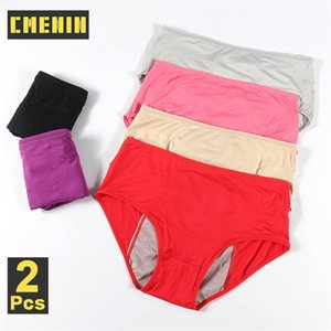 2pcs lot Women Breathable Physiological Panties Sexy Menstrual Underwear Women Mid Waist Warm Healthy For Girls Briefs P0059