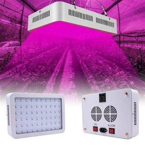 600W DUAL CHIPS 380-730NM Full Spectrum LED Planta Lámpara de crecimiento Planta Blanco Material premium de alta calidad Grow Lights Entrega gratuita