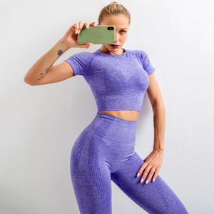 2Pcs Seamless Yoga Set Women Gym Workout Clothes Sports Bra + high waist trousers Sports Suits comfortable and breathable Z1125
