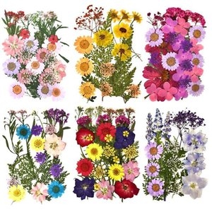 Kurutulmuş Çiçekler Bitkiler DIY Reçine Kalıp Dolgu Epoksi UV El Yapımı Zanaat Nail Art Dekorasyon Takı Yapımı için C0121
