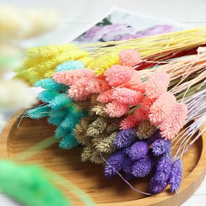 20Pcs Colorful Tail Artificial Uraria Picta Grass Tails Dried Flowers Natural Material Pastoral Style Wedding Home