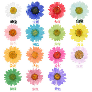 120pcs Pressed Press Dried Daisy Dry Flower Plants For Epoxy Resin Pendant Necklace Jewelry Making Craft DIY Accessories Z1120