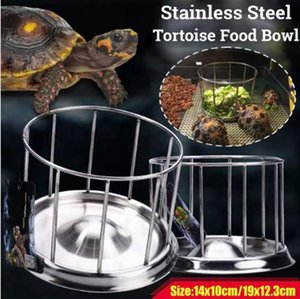 Acciaio inossidabile Reptile Feeder Tortoise Lizard Gecko Chameleon Food Water Feeder Slav Bowl Feeder Tool Accessori