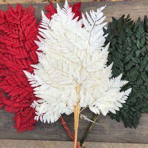 Soft Pole Fiddlehead Ferns,Dry Natural Fresh Preserved Plant,Eternal Dried Arachniodes Leaves,christmas leaf,Wedding Decoration Q1126