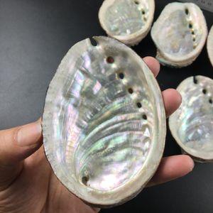 Conchas de abulones naturales Conchas marinas Inicio Aquarium Paisaje DIY Decoración náutica Soporte de jabón 9 10cm Craft Craftable Joyerable Holder H JllMPH