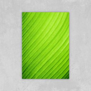 Decorated Abstract Picture Art Paints su tela Chiuda in su verde foglia di banana foglia di tubo di tela a olio di tela su tela decorazioni da parete 24x36 pollici