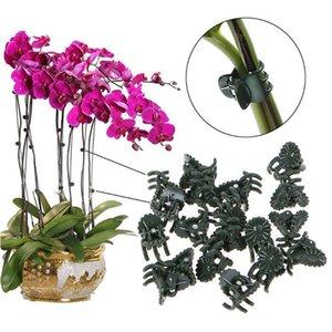 10/50 unids Plastic Garden Clip Clip de mariposa para Phalaenopsis Injer Link Plant Vine Orchid Stem Vine Soporte Bund Jllshn