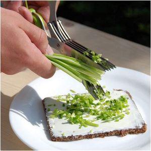 Outils de cuisson en acier inoxydable Couteaux Couteaux 5 couches Ciseaux Sushi Râpé Scallion Coups d'herbe Ciseaux