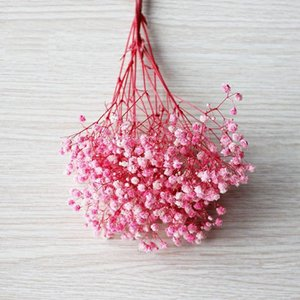 Fresh Flowers Forever Baby Breath Flower Branch 100g Preserved Dry Natural Real Gypsophila Bouquet DWF3944