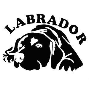 15 * 10.3 cm Sevimli Labrador Köpek Araba Araç Vücut Pencere Yansıtıcı Çıkartmaları Sticker Dekorasyon Araba Aksesuarları