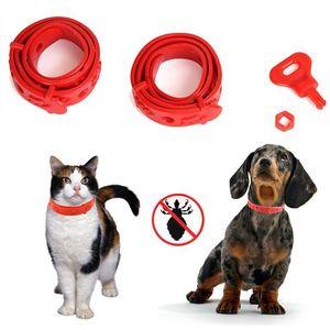 Adjustable Cat Puppy Anti Pest Collar Neck Trap Anti Flea Tick Mite Pet Protection Collar Leash For Cat Dog Skin Health Care
