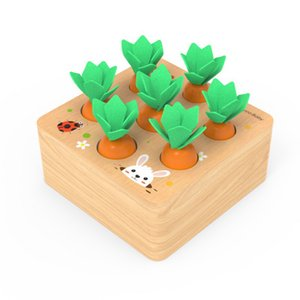 Set Pulling Carrot Shape Matching Size Cognition Montessori Educational Toy Wooden Toys Baby