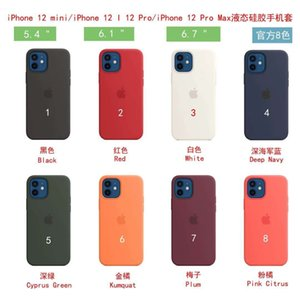Liquid Silicone Case Phone New Arrival Soft Baby Skin Mobile Phone Accessories Back Cover for iPhone 11 pro 12 mini xs max