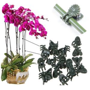 10/50 unids Plastic Garden Clip Clip de mariposa para Phalaenopsis Graff Clip Plant Vine Orchid Stem Vine Soporte Bund Bbyzou