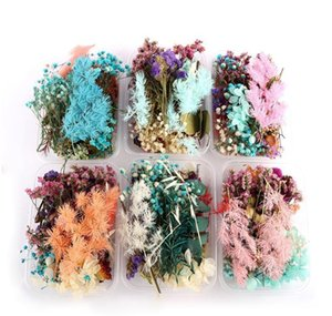 Real Dried Flower Dry Plants For Aromatherapy Candle Epoxy Resin Pendant Necklace Jewelry Making Dried Flowe jllrKq yeah2010