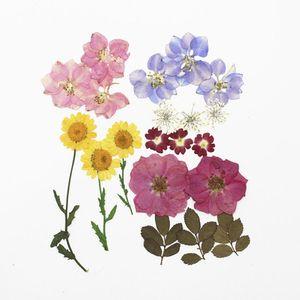 1Bag Flores secas resina UV decorativo floral floral flor adesivos 3d beleza Nail Art decalques Epoxy molde DIY Enchimento de jóias H Qylkag