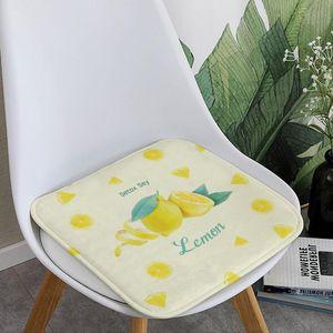 Floor Mat Anti Slip Doormat for Entrance Door Soft Seat Cushion Absorbent Hallway Floor Rug Washable Foot Mat 40 x 40 cm