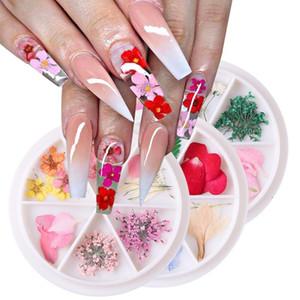 1 Wheel Dried Flowers Nail Art Decorations Natural Flower Leaf Floral Manicure Sticker Summer Slider Design For Nails LA1559-1