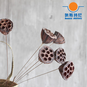 5pcs dried naturally flower bouquets small size naturally dired lotus seedpod&seedpod of the lotus without seed Z1119