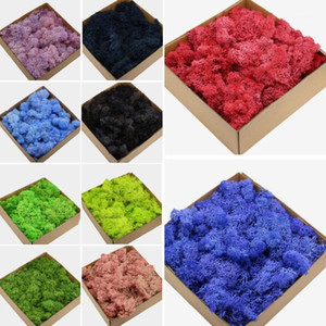 1 Box Multiple Colors DIY Artificial Plants Eternal Life Dried Moss Preserved Decorative Flowers Wedding Decor1