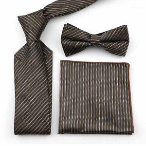 PAYSY PAID PAID PAISLEY 100% Polyester 7cm Collectie Set Hommes Bureau Office Costume Formel Jolie Cravate Mouchoir Butterfly Bowtie1