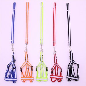 Pet Dog Dog Sécurité Sécurité de la nuit Réfléchissant Trace de corde Tour de la corde Laisse de la poitrine pour chien 1,2 m (m) DHE3307
