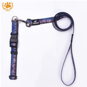 My Pet Collars Leashs Sets For Dog With Rubber Waterproof Deodorant City Led Dog Collar Animal Strips Dropshipping