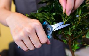 Tijeras pruner Secateurs poda tijeras de poda de derivación sacudiendo sacudidor herramienta jardín herramienta bonsai flor cultivando sólido snip floral mini