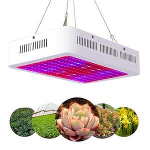 Venta caliente 2000W DUAL chips 380-730nm Full Spectrum LED Planta Lámpara de crecimiento de planta blanca LED interior LED Grow Lights