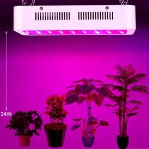 600W Dual Chips 380-730nm Spectrum Full Light Lampe de croissance de la plante Blanc Haute qualité Grow Lights