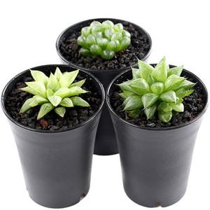 200pcs Plastic Round Succulents Pots Flowers Cultivate Bottom Breathable Flower Pot Flower Planter Home Succulents Breed Garden Pots on Sale