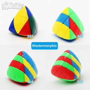 Set 4pcs 2pcs Shengshou Mastermorphix 2x2 3x3 4x4 5x5 Rice Dumpling Stickerless Magic Cubes Puzzle Toy Colorful Multicolor 5x5x5 201219