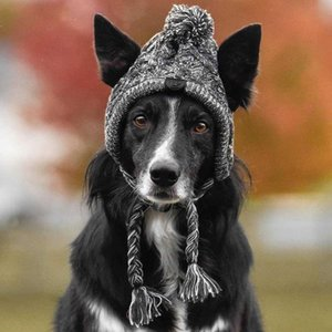Winter Dog Hat Classic Warm Pet Dog Knitted Warmth Hat for Medium Dogs XR-Hot