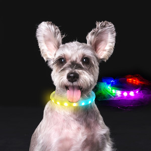 Horse Race Lamp LED Dog Collar Hi-Tech 14 Modes Flash Collar for Dogs USB Charging Anti-Lost Silicone Necklace Pet products 201126