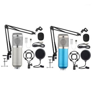 BM-800 Hanging Microphone Kit, Live Broadcast Recording Large Diaphragm Condenser Microphone Set1