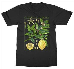 Queen XSX Lemon Plant T Shirt Short Sleeve O Neck Botanical Garden Print Art Botany Bloom Fruit Flower Cotton T Shirt